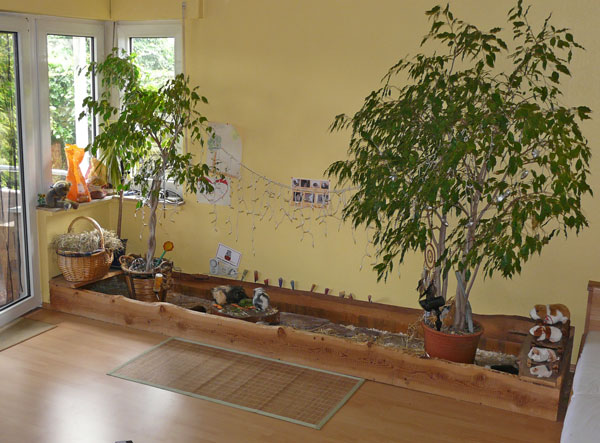innengehege cavy forest. Black Bedroom Furniture Sets. Home Design Ideas